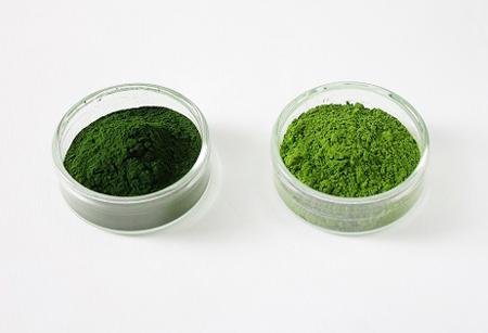 左側は、同社の主力商品である「サン・クロレラA」に使用されている粉末。右側は、左側の粉末の1/4~1/3程度の粒子サイズになるように微粉砕加工された「クロレラパウダー for Cooking」。